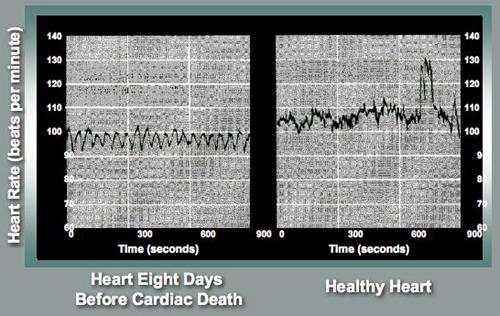 The Heartbeats (www.nae.edu)